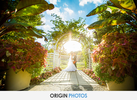 origin-photos-EdelWeiss-&-Paul-Wedding-Celebration-318